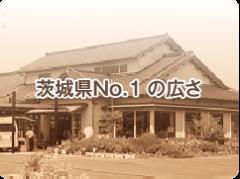 茨城県広さNO.1の高齢者住宅